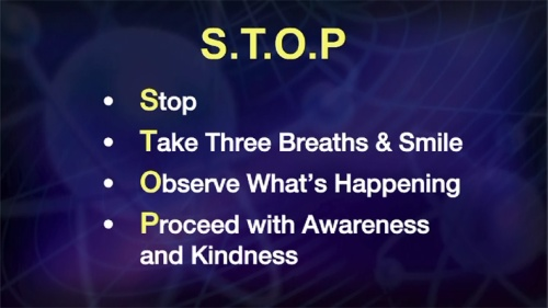 STOP stop take observe proceed