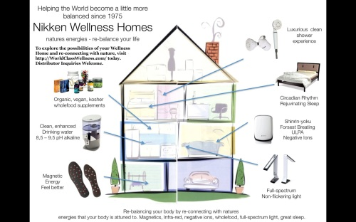 building-trends-2015-wellness-homes-communities-cities-wcw-nikken.jpg