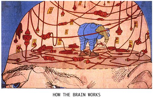 how-the-brain-works-cartoon.jpg