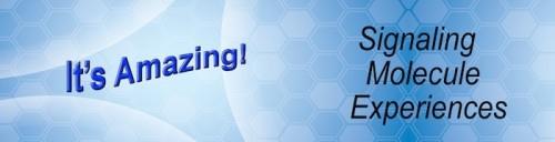 ASEA signaling molecule experiences its amazing