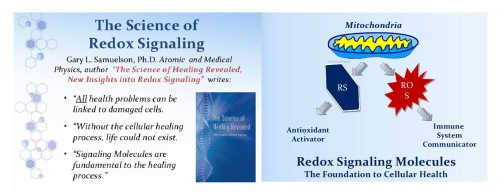 asea-science-healing-revealed-dr-sam-mitochondria-basic.jpg